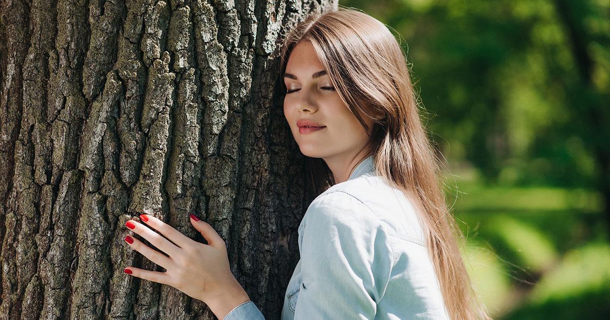 طراحی وب سایت چوب