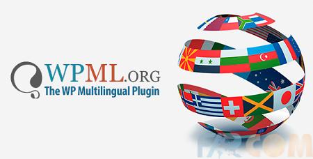 WPML پلاگین